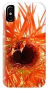 0690c-017 IPhone Case
