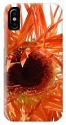 0690c-024 IPhone Case