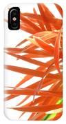 0692c-004 IPhone Case