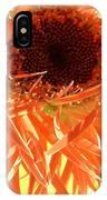 0692c-009 IPhone Case