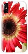 2193c-001 IPhone Case