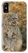 A Bobcat IPhone Case