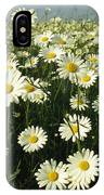 A Field Filled With Daisies In Bloom IPhone Case