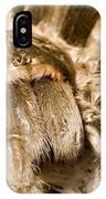 A Tarantula Living In Mangrove Forest IPhone Case
