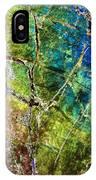 Amphibole Mineral, Light Micrograph IPhone Case