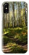 Aspen Dreamland IPhone Case