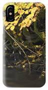 Autumn Flow IPhone Case