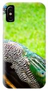 Beautiful And Pride Peacock On A Lawn IPhone Case