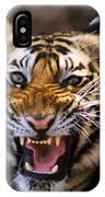 Bengal Tiger (panthera Tigris) IPhone Case