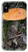 Birch Bolet IPhone Case