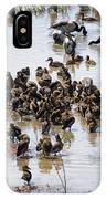 Birds Of A Feather IPhone Case