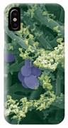 Blue Cheese IPhone Case
