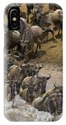 Blue Wildebeest Connochaetes Taurinus IPhone Case