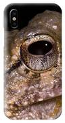 Bobs Robber Frog IPhone Case