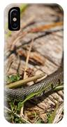 British Grass Snake IPhone Case