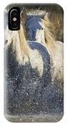 Camargue Horse Equus Caballus Group IPhone Case