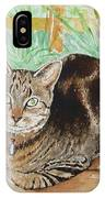 Cat Commission Sample IPhone Case