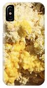 Close-up Of Yellow Salt Crystals IPhone Case