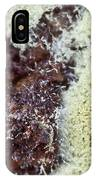 Coffee Grounds 1 IPhone Case