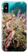 Colorful Reef Scene, Komodo, Indonesia IPhone Case