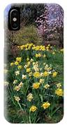 Daffodils (narcissus Sp.) IPhone Case