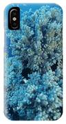 Damselfish Shoal IPhone Case