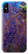 Deep Water Sea Fan IPhone Case