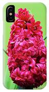 Double Hyacinth 'hollyhock' IPhone Case