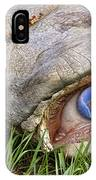 Eye Of A Dinosaur Lightning IPhone Case