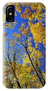 Fall Maple Trees IPhone Case