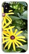 Flower Rudbeckia Fulgida In Full IPhone Case