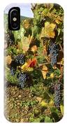 Grapes Growing On Vine IPhone Case