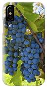 Grapes On A Vine Sutton Junction Quebec IPhone Case