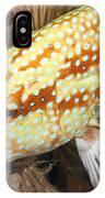 Grouper IPhone Case