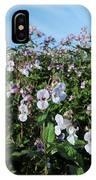 Himalayan Balsam (impatiens Glandulifer) IPhone Case