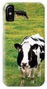 Holstein Dairy Cattle IPhone Case