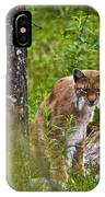 Lynx IPhone Case