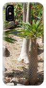 Madagascar Palms IPhone Case