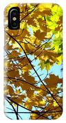 Maple Leaf Canopy IPhone Case