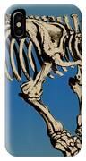 Megatherium Extinct Ground Sloth IPhone Case