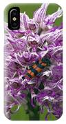 Monkey Orchid (orchis Simia) IPhone Case