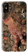 Ocellate Octopus With Two Blue Spots IPhone Case