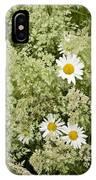 Ox-eye Daisies (leucanthemum Vulgare) IPhone Case