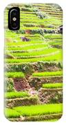 Paddy Rice Fields IPhone Case
