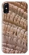 Petrified Wood, Sem IPhone Case