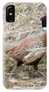 Pheasant Walking IPhone Case