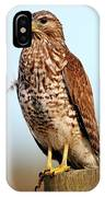 Portrait Of A Red Shouldered Hawk IPhone Case