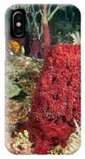 Red Sponge IPhone Case