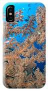 Reef Scene With Sea Fan, Papua New IPhone Case