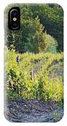 Rows Of Grapevines At Sunset IPhone Case